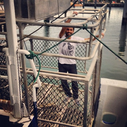 Testing out the #shark cage! (at Port Lincoln Marina)
