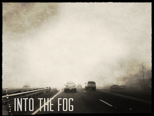 Into the fog on Flickr.