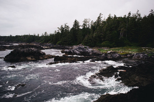 Vancouver Island #2 by hannahschmucker on Flickr.