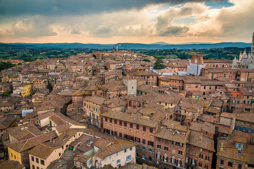 just-wanna-travel:  Siena, Italy