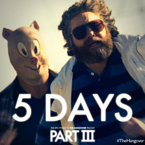 hangoverpart3:  The Wolfpack is back May 23rd. Get your tickets here: http://hangoverpart3.com