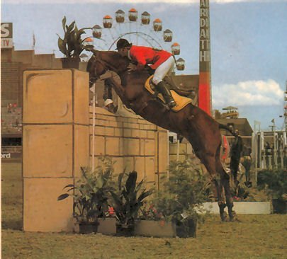 showjumperer:  aussieshowjumpers:  Guy Creighton riding Little Jon, 7.1336m (7 feet), Adelaide Royal 1980. Little Jon was 21 years old at the time this photo was taken.  Photo courtesy of Show Horse Magazine  Working for this family! Love it!