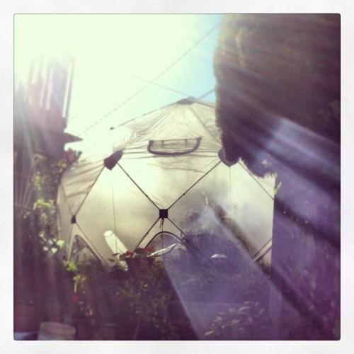 I'd like to be… In Sausali(to)… In a geodesic garden… With you.