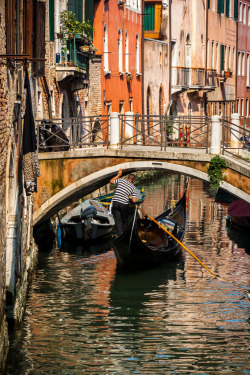 aaaeo:  Venice Italy: Gondolier Navigating under very low bridge by David Claringbold
