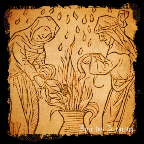 spiritusarcanum:  Woodcut of two witches  summoning the rain.