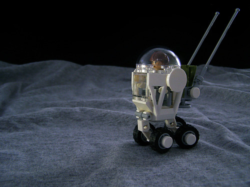 Moon Cricket