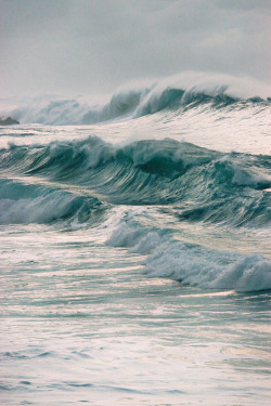 mystic-revelations:  Waimea Shorebreak (by malpractice)