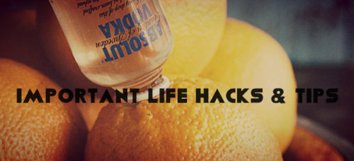 forebidden:   fabulusly:  sailbo4ts:  protozoma:  oxw:  These posts actually make my life so much easier <3 15 Life Hacks (ex. Charge Your Phone Faster!) 7 Life Tips That You Need (ex. No drip Ice Pack) How To HACK Your Booze (ex. Stapler Bottle Opener  Secret McDonalds Menu (ex. Ice Cream Floats) Foods You Should STOP Buying (ex. Frozen Fruit Popsicles) Hack Your Ramen! (ex. Ramen Pizza) Exercises For Flat Abs (ex. The Cobra) Awesome Eyeliner Tricks (ex. Blue Eyes) Foods that KILL Pets (ex. Bones)  OMFG REBLOGGING BECAUSE I USE THESE SO MUCH   shdfksjdfhsdjkfsdh my phone charges so fAST nOW holY fuCKKK GOD BLESS THIS POST  WHY ISNT THIS SHIT TAUGHT IN SCHOOLS  ah these are actually really good