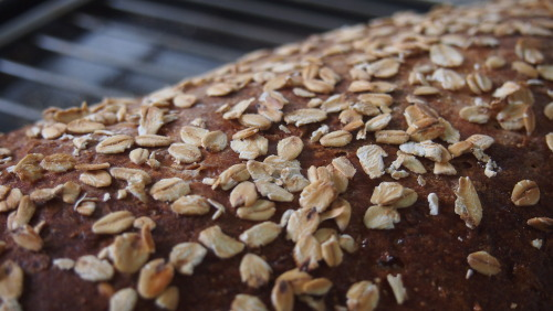"An interesting loaf - rolled oats and apple bread (from ""The Handmade Loaf"" by Dan Lepard)"