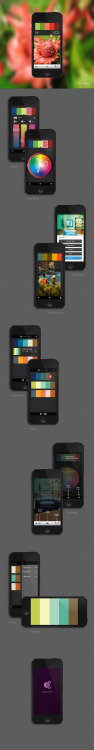 Adobe Kuler iphone app from behance