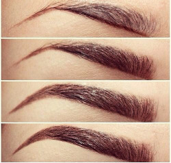 beauty makeup cosmetics eyebrows how to step by step eyebrow tutorial