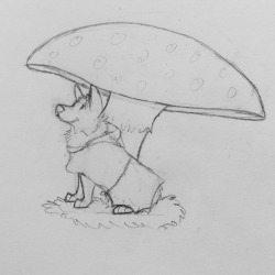 Avoiding my Calculus homework. So here's my doodle of a corgi in a raincoat sitting under a giant mushroom.