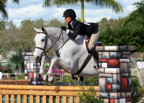 two-strides-out:  wonderrider:  Vida Blue and Maddy Darst WEF 2013 Photo Credit: Big Eq  Perf