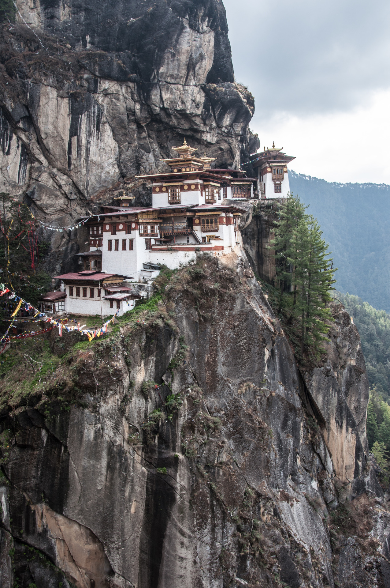 danlophotography:  Tiger's Nest Temple, Bhutan