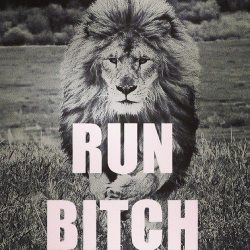 Run,Bitch :* | via Facebook on We Heart It - http://weheartit.com/entry/58466505/via/sarasj   Hearted from: https://www.facebook.com/photo.php?fbid=323227771137099&set=a.275227315937145.64528.152134308246447&type=1&theater