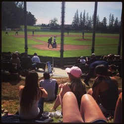It's a great day to watch some Sonoma State Baseball #letsgoboys #sunday #baseball #noma #seawolves