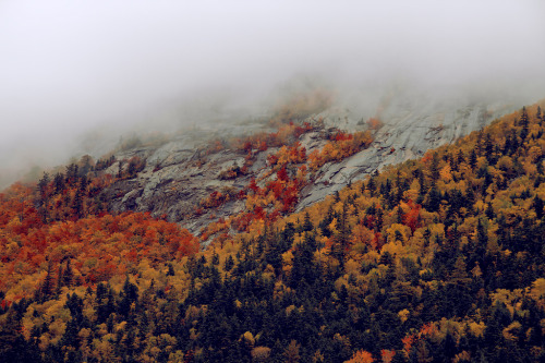 definitelydope:  mountain side (by ben totman)