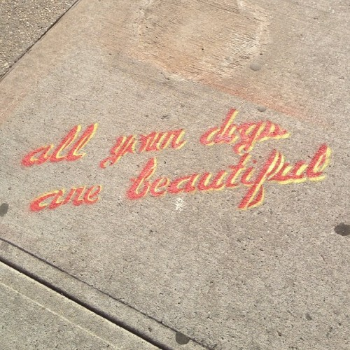 "jamesdavidsaul:  ""all your days dogs are beautiful"" popped up overnight #streetart #brooklyn (at 500 Saint Marks Ave)  I am in love with this."