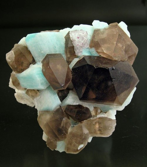 bijoux-et-mineraux:  Smoky Quartz and Amazonite with a small patch of clear & purple Fluorite