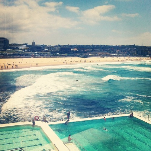 at Bondi Icebergs