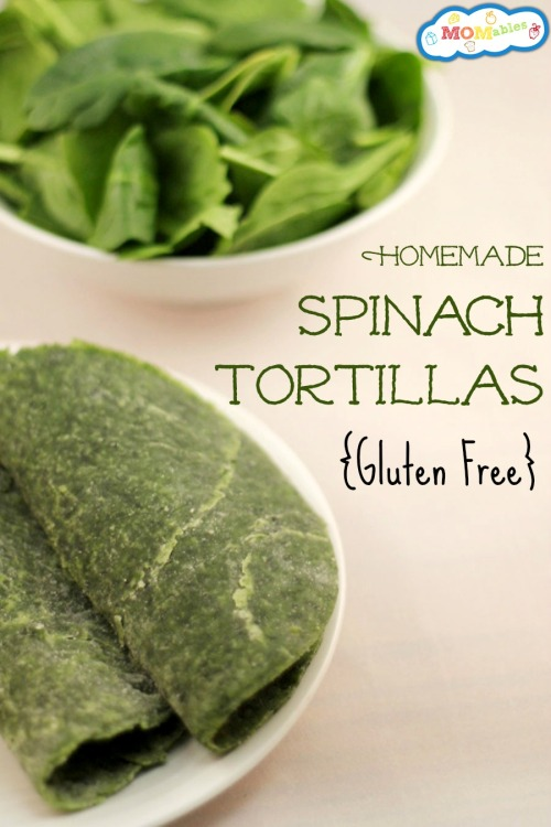 Gluten Free Spinach Tortillas Recipe - Get access to a FREE week of school lunch menus  If I had actually known these tortillas were going to be so simple to make… … I would've done it a very long time ago! If you are anything like me then you comprehend exactly how time consuming the dinner making procedure can be….