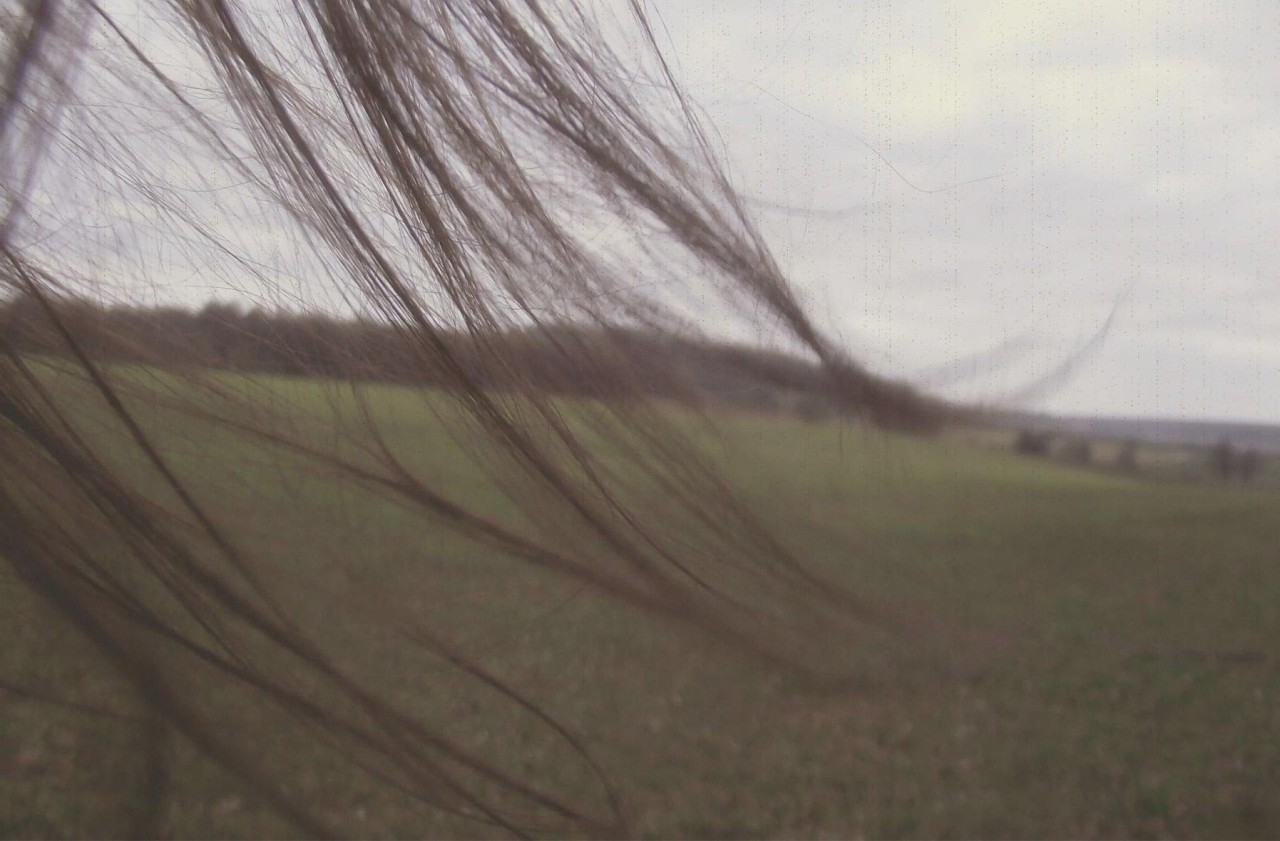 """Here and Hair.."" // Spring 2011"
