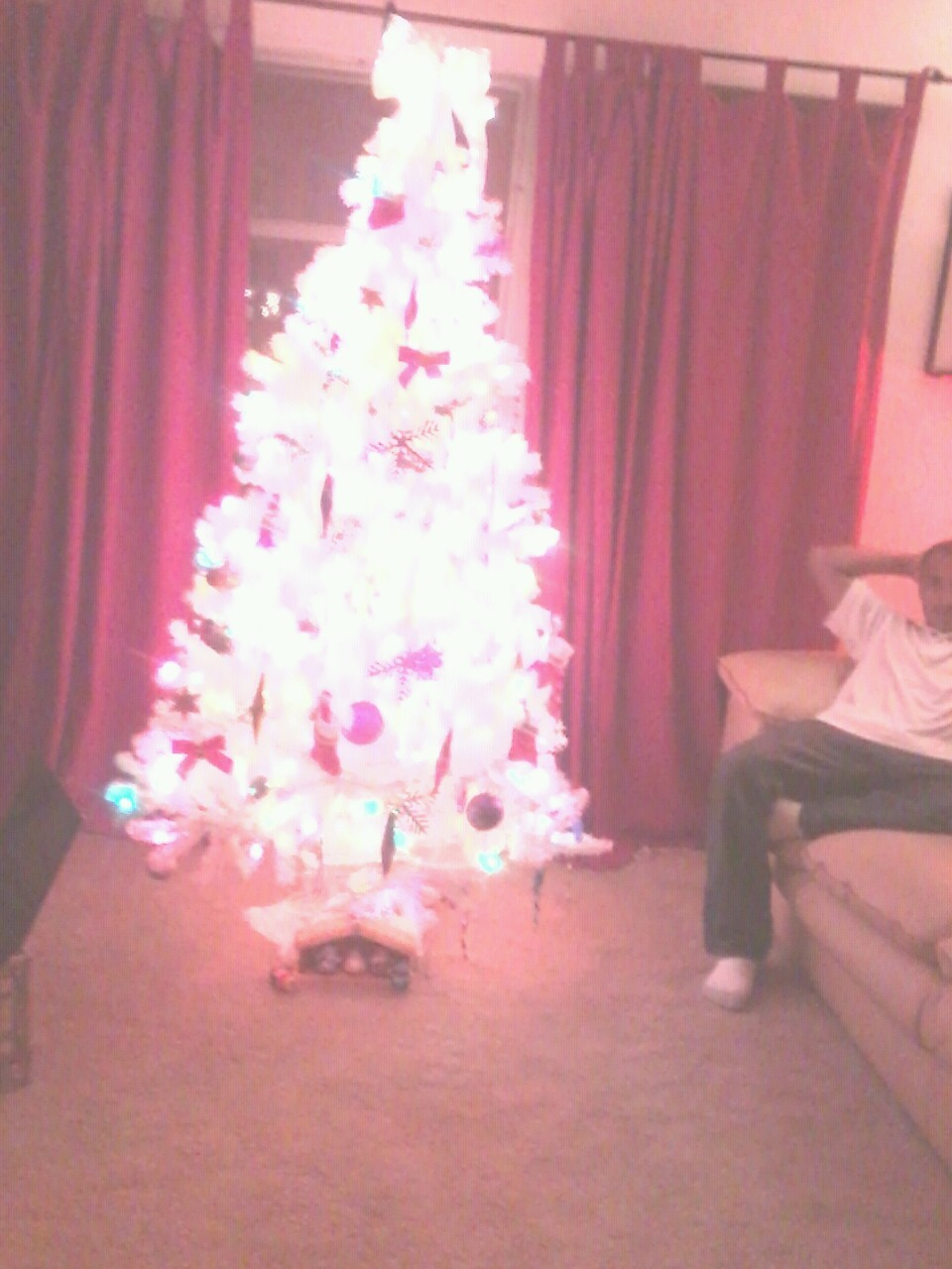 My aunts christmas tree and my boo