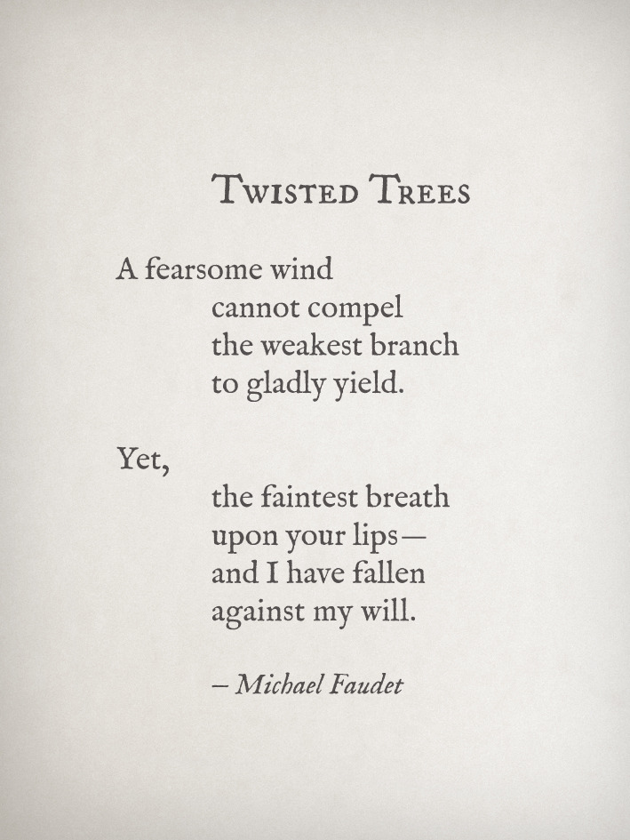michaelfaudet:  Twisted Trees by Michael Faudet