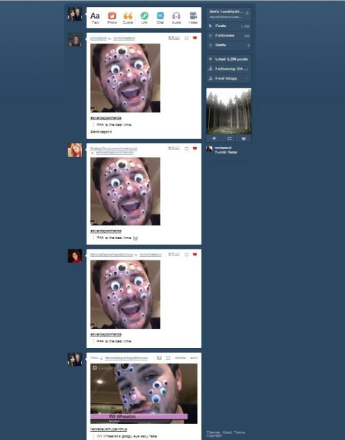 saynotohorcruxes:  My Tumblr Dashboard during the P4A live stream. An Abundance of Googlyeyed Wils.