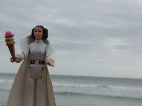 adventureswithleia:  Leia's Dark and Stormy Day (http://adventureswithleia.wordpress.com/2013/04/26/leias-dark-and-stormy-day/)  Um, have you guys seen this blog?!  Adventures With Leia <3