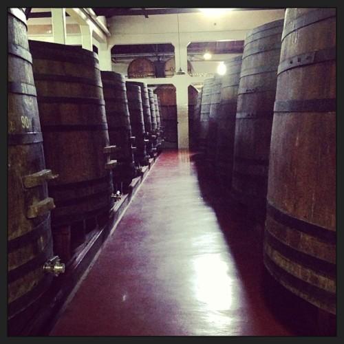 Heaven (at Bodega Lopez, Mendoza)