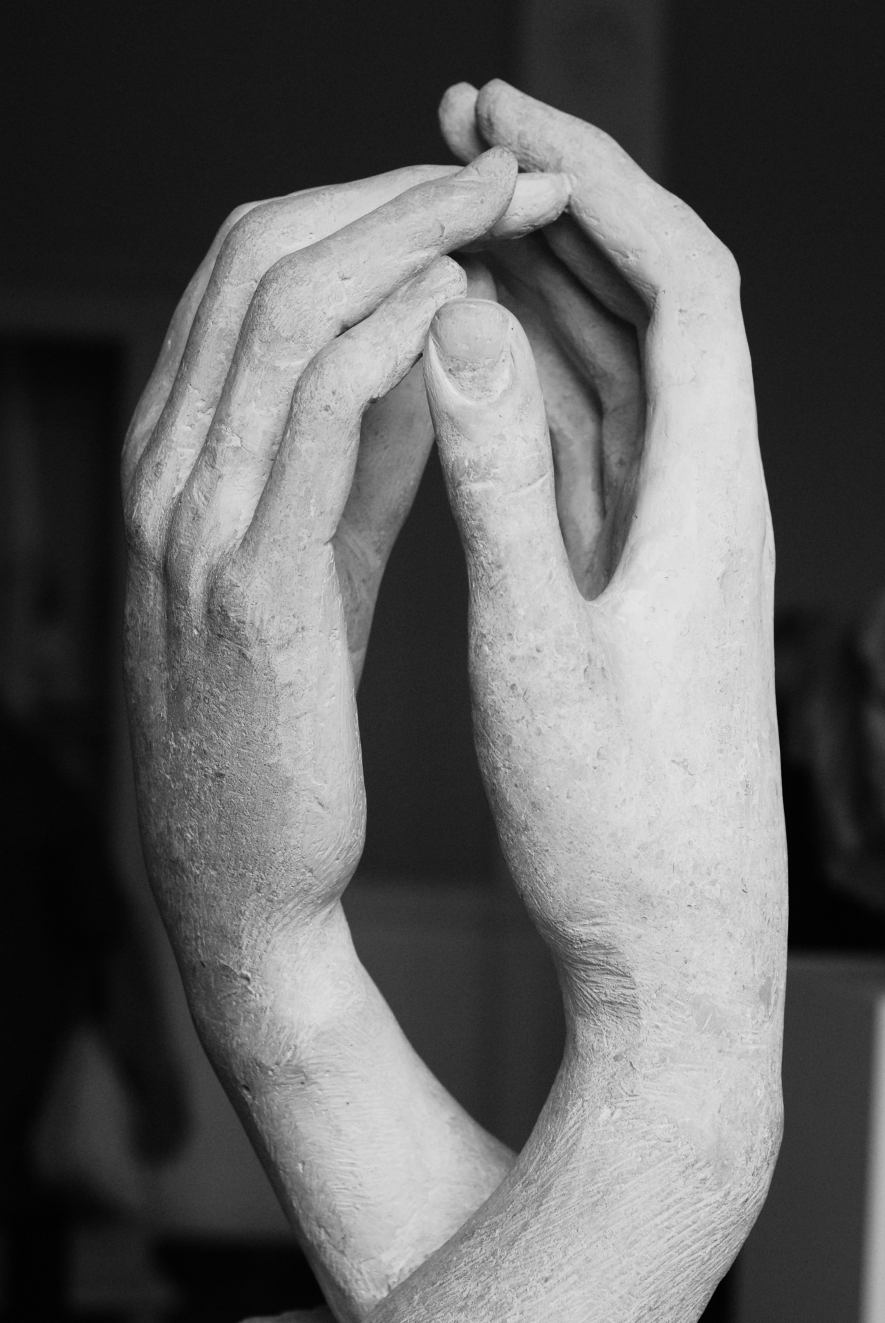 aritakesphotos:  hands, musèe rodin paris, spring 2013