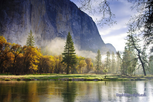 esteldin:  Mistical Magical Yosemite - Yosemite National Park California by Darvin Atkeson on Flickr.