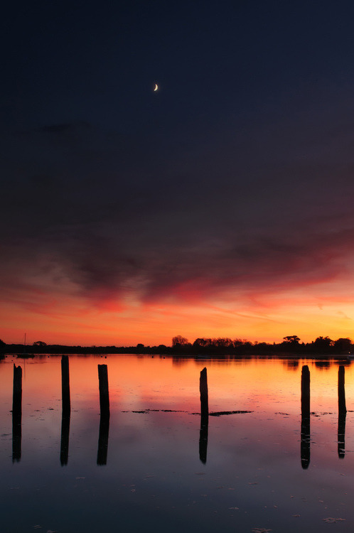touchdisky:  by Sunset Snapper