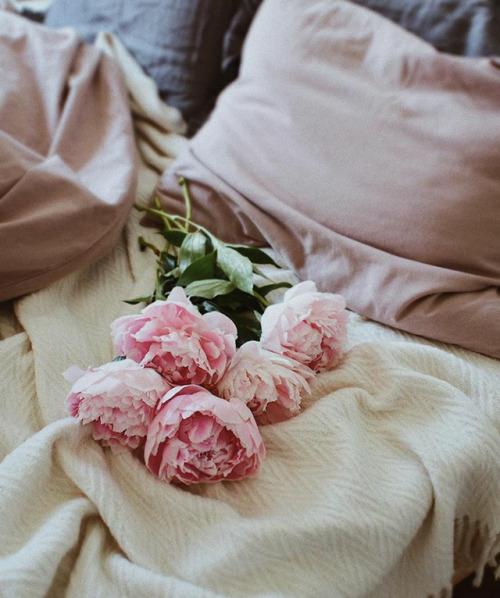 bed bedroom bedroom decor bedroom design home home sweet home home decor home design pillows flowers pink flowers nature zaarriest