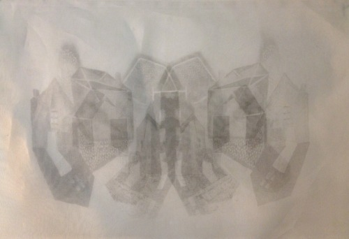 Untitled Lithography on organza fabric 2013