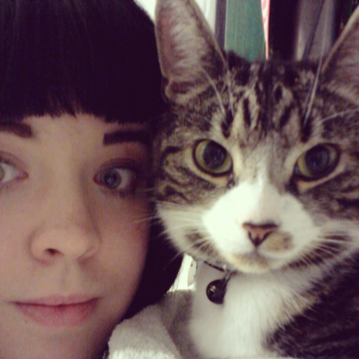 Haha, I really need a life. Selfies with my cat on a Friday night.
