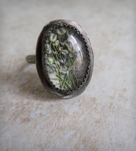 Baby's Breath Under Glass Ring