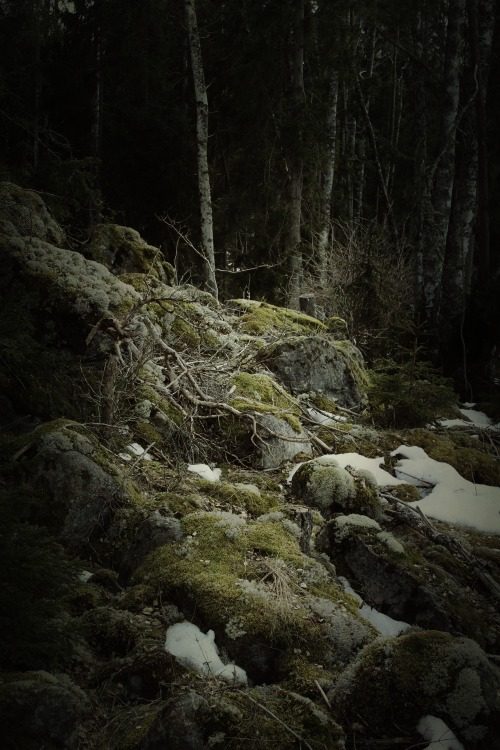heathenharnow:  Där långa skuggor ruva XII© Heathen Harnow - please do not remove credit