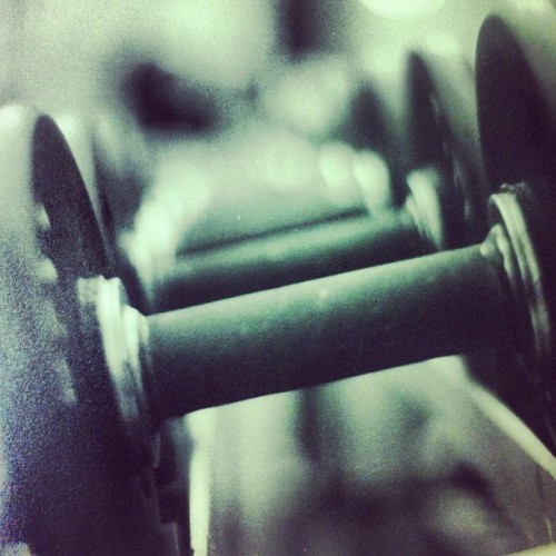 #film #photography #weights #scucrew @santaclararowing