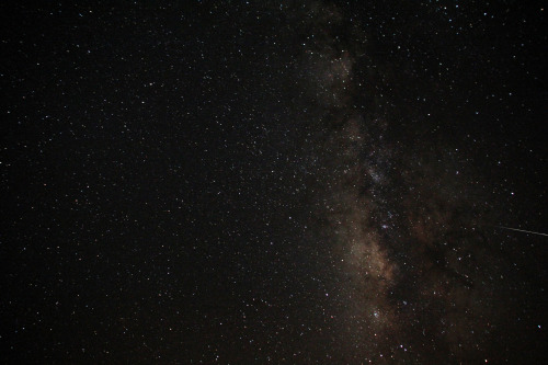 walking-on-earth:  The milky way. Sinai, Egypt.  Home.