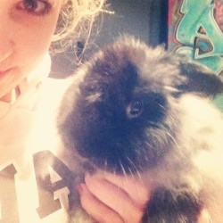 I have a pet rabbit 🐇🐰#bunny #heisannoying #but #cute