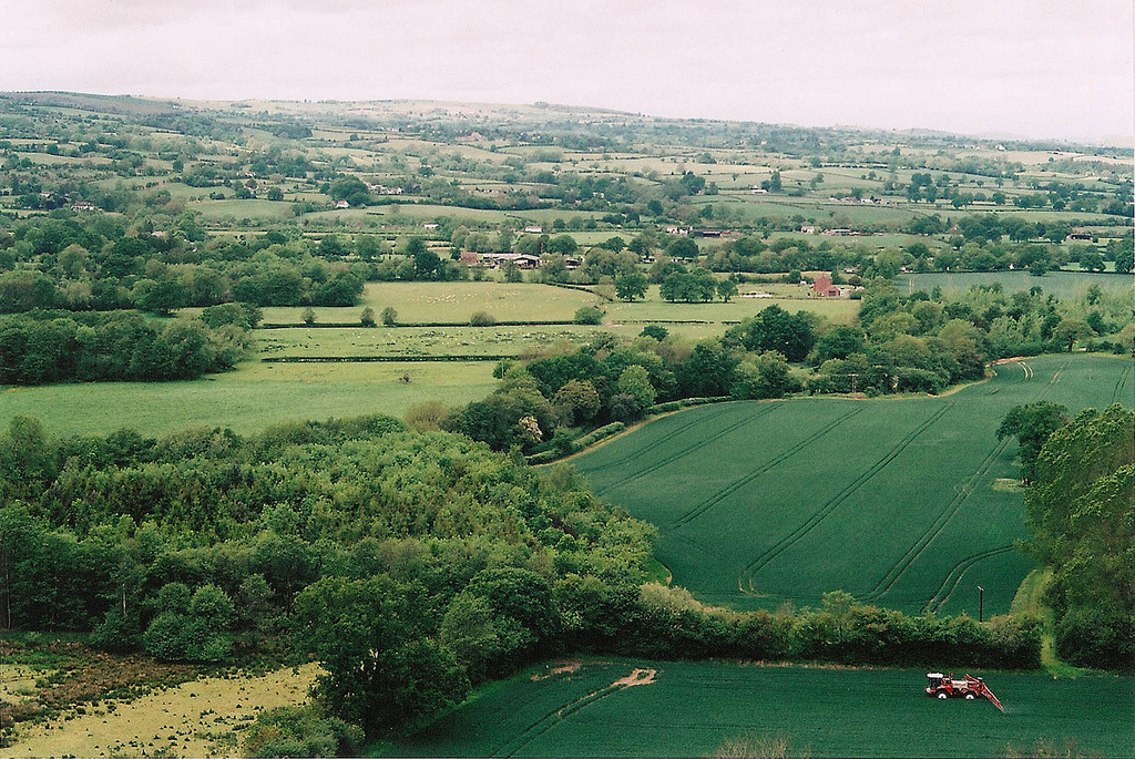 21vines:  Shropshire Hills (by Sophie Wainwright)