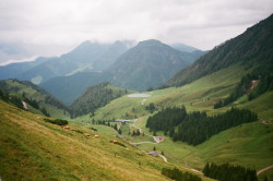 robot-heart:  Sommer in den Alpen (by kara o'keefe)