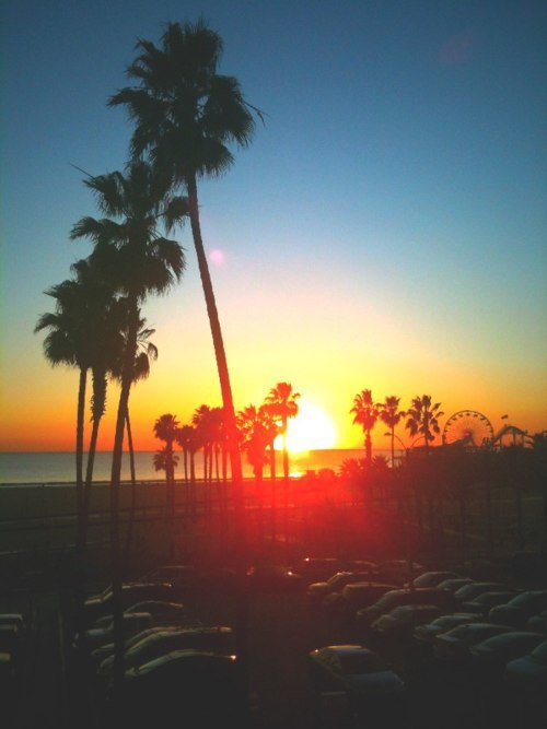 warm-tan-beach-sand:   ☀Want more summer on your dash? Follow me: Warm-tan-beach-sand for 110% Active summer blog!☀