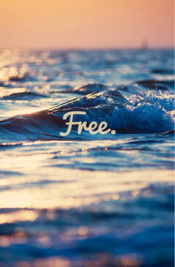 gif love LOL pretty art funny couple girl cute quote text fashion music quotes beautiful movie summer hipster boy happiness Clothes shopping sea freedom spring accessories outfits free