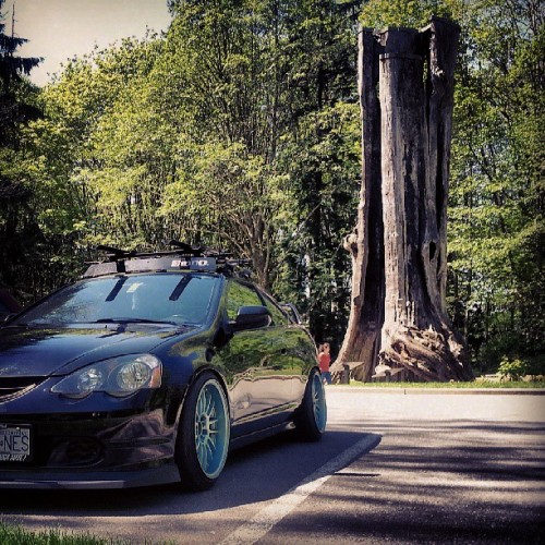 Up for a nice drive on this beautiful day #honda #rsx #dc5 #dailydriven #dc5crew #dc5Society #wrongfitmentcrew  #highmaintenancecrew #lowstandards #loweredlifestyle #faplife #thatsteez #stretchandpoke #illmotion #canibeat #illest #freshonstance #cruisindaily #styleovercomfort (at The Hollow Tree)