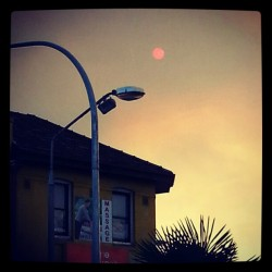red sun fuark #red#sun#arvo#afternoon#sydney#fire#bushfire#summer#heat#clouds#sunnies#photo#instadaily#instagood#insta#environment#climate#change#armageddon#endoftheworld#lol#australia#day#shiee#oh#ceebs#house#light