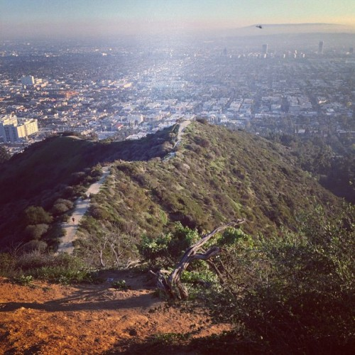 Long way down @runyoncanyon day 4