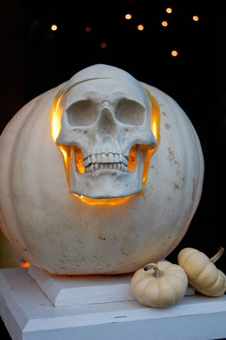 Skull inspiration 30 skull pumpkin carving ideas White pumpkin carving ideas